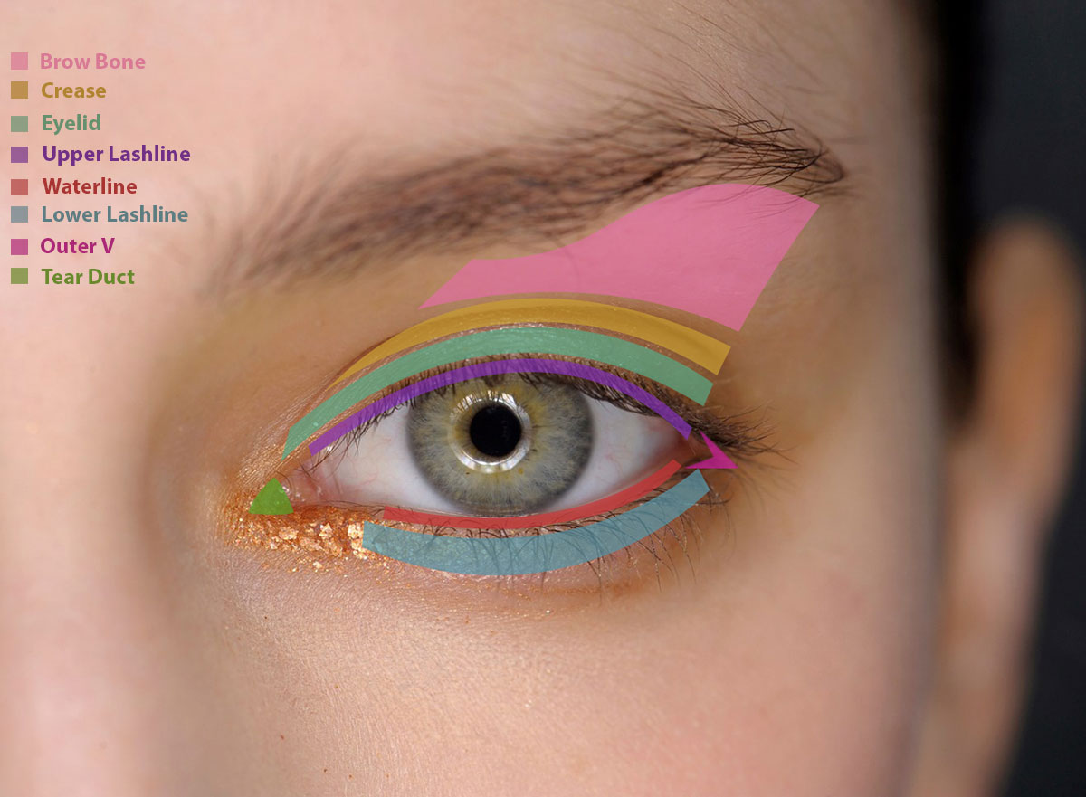 How To Apply Eye Makeup Eye Makeup Guide Fashionisers