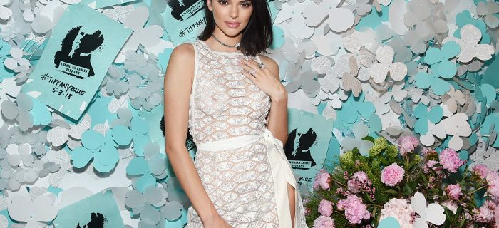 Kendall Jenner Frees The Nipple in a Naked Dress