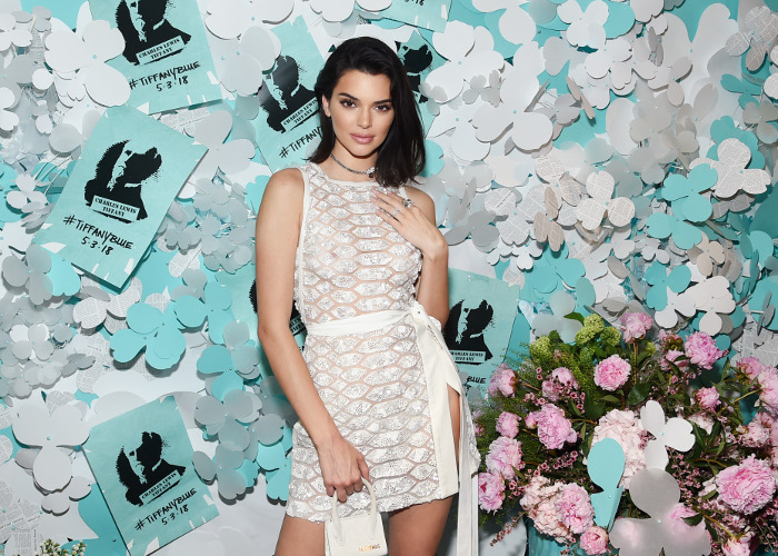 Can-You-Believe-These-Stars-Went-Braless-In-Public-kendall jenner