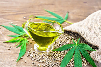 is-it-safe-to-use-cbd-oil-cbd-hemp-plant