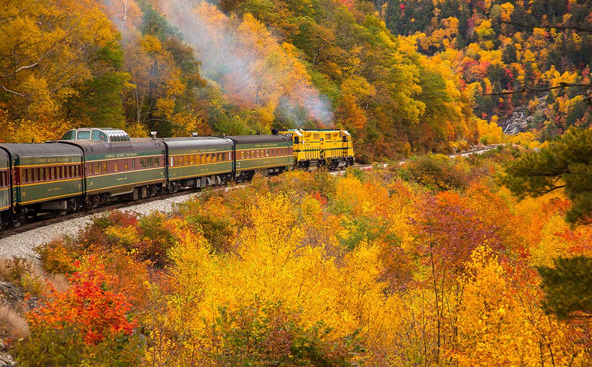 traveling-in-comfort-and-style-beautiful-image-of-train-in-countryside