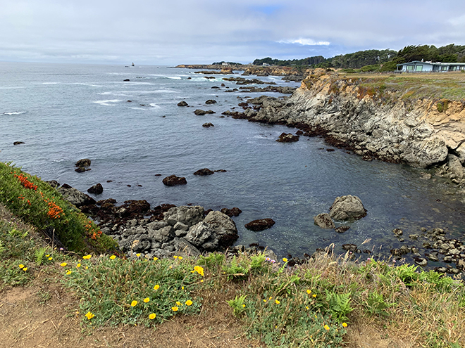 mendocino-heart-and-soul-of-california-beach-frton