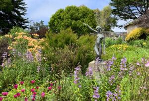 mendocino-heart-and-soul-of-california-mendocino-coast-botanical-gardens-1