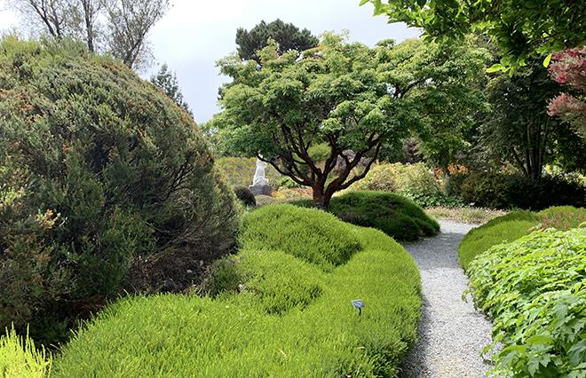 mendocino-heart-and-soul-of-california-mendocino-coast-botanical-gardens-2