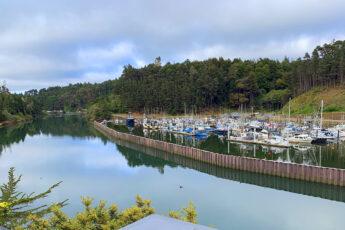 where-to-eat-in-mendocino-coast-seafood-harborview-bistro-noyo-river-main-image